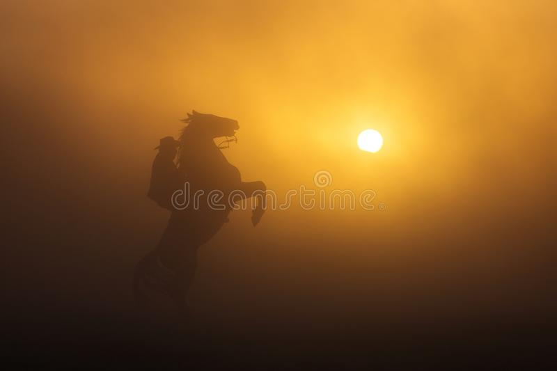 Cowboy puting his horse to stay in two feets at sunset with dust royalty free stock photo
