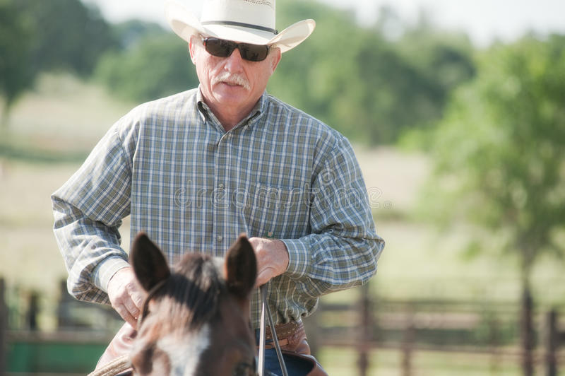 Cowboy que monta um cavalo fotos de stock royalty free