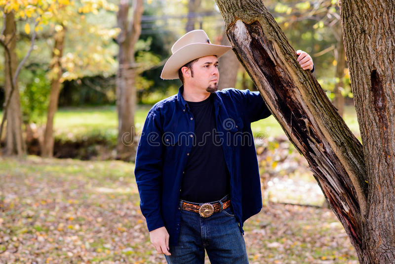 Cowboy Rancher all'albero che guarda per radrizzare fotografie stock