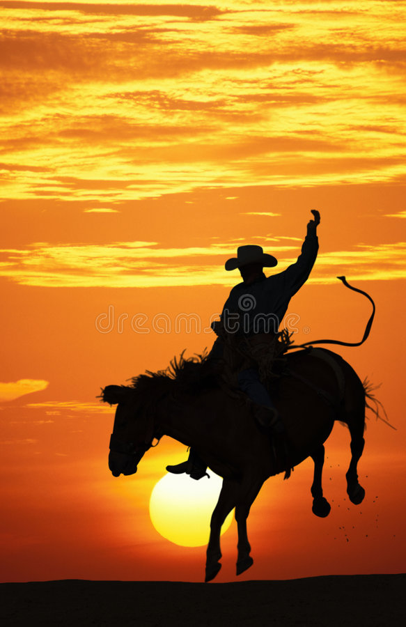 Free Cowboy Riding A Bucking Horse. Royalty Free Stock Photography - 8064567