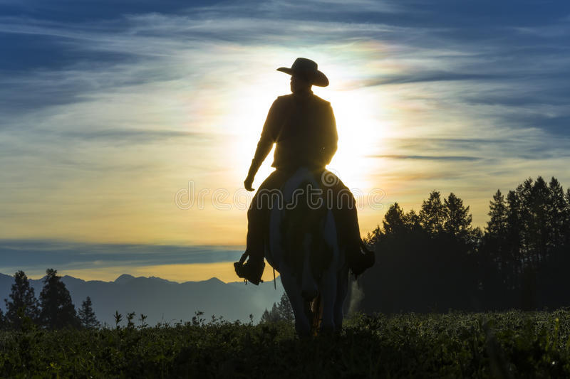 Cowboy riding across grassland royalty free stock images
