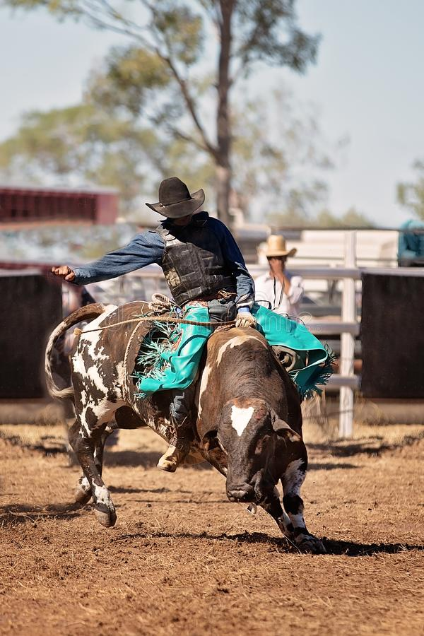 Cowboy Riding A Bucking Bull In A Rodeo stock photo