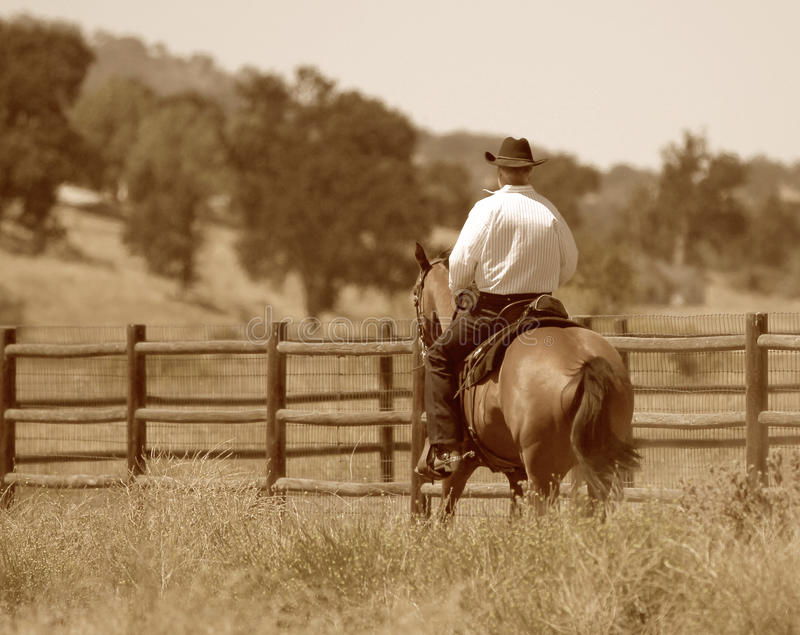 Download A Cowboy Riding His Horse In A Meadow. Stock Photo - Image: 35033486