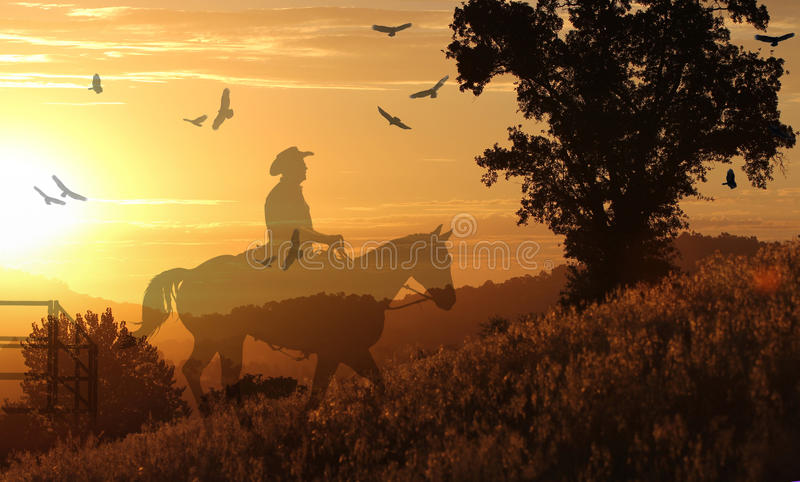 Download Cowboy Riding On A Horse II. Stock Image - Image of color, flying: 27174565