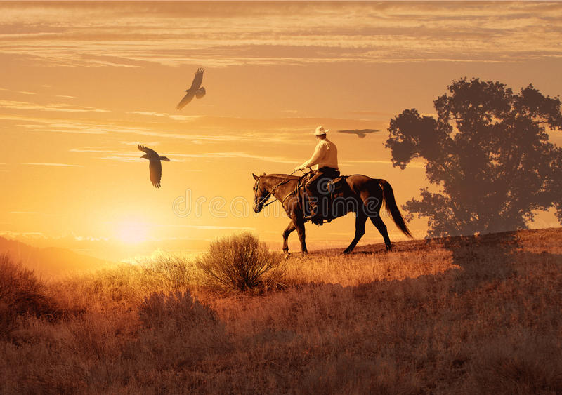 Download Cowboy riding on a horse. stock image. Image of horizon - 54571595