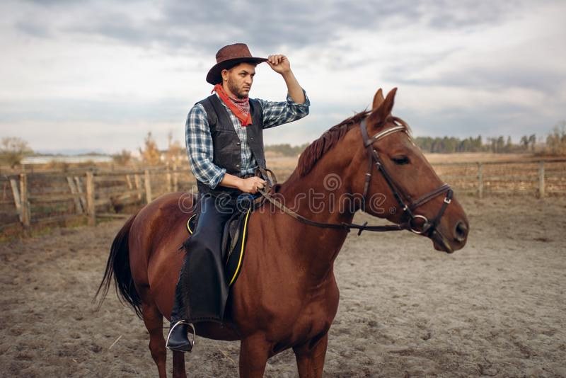 Cowboy riding a horse in texas country, saloon. On background, western. Vintage male person on horseback, wild west adventure stock photo