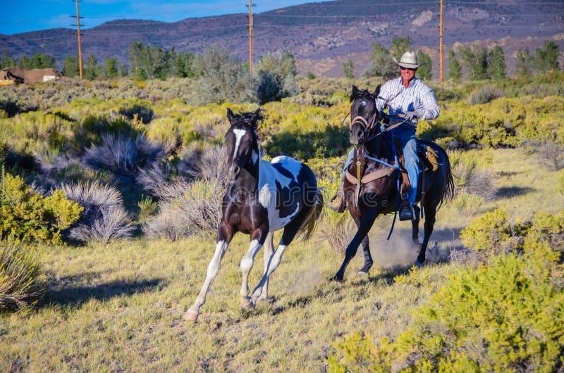Cowboy rocailleux photographie stock