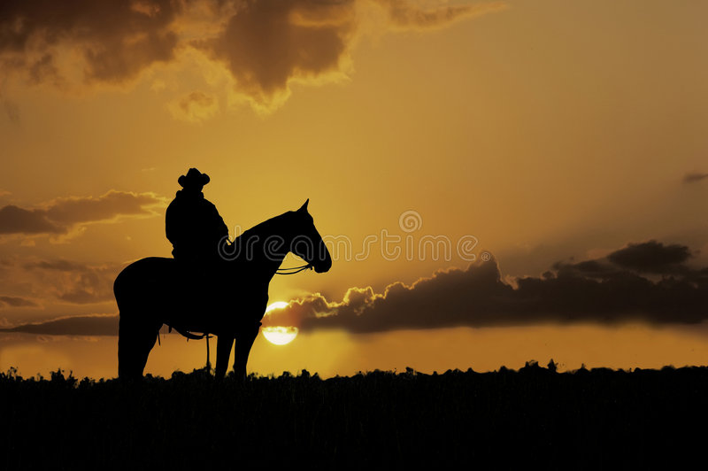 Cowboy silhouette royalty free stock photos
