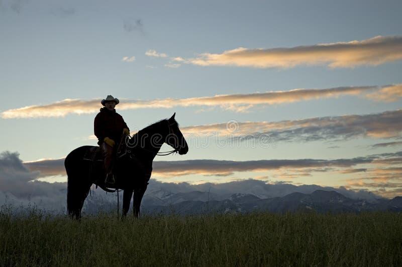 Cowboy silhouette royalty free stock photo