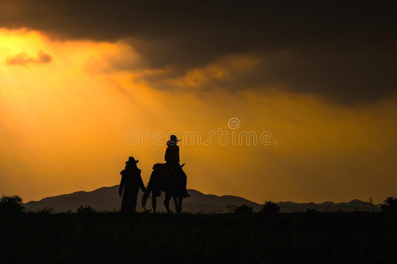 Cowboy silhouette on horse during nice sunset. Cowboy silhouette on a horse during nice sunset royalty free stock photo