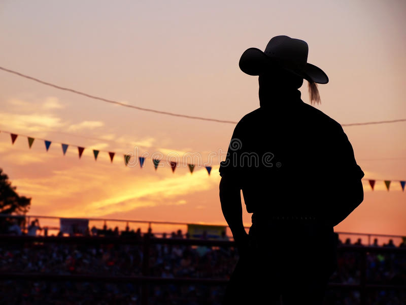 Cowboy In The Stands stock image