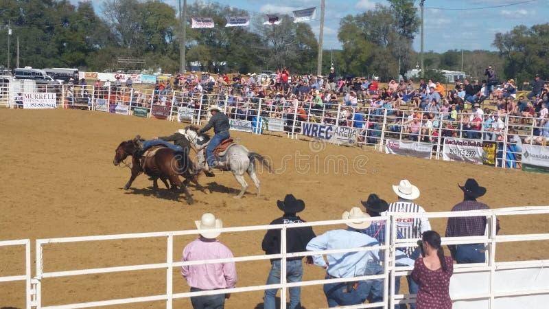 Download Cowboy sur le cheval image éditorial. Image du cowboy - 87706435