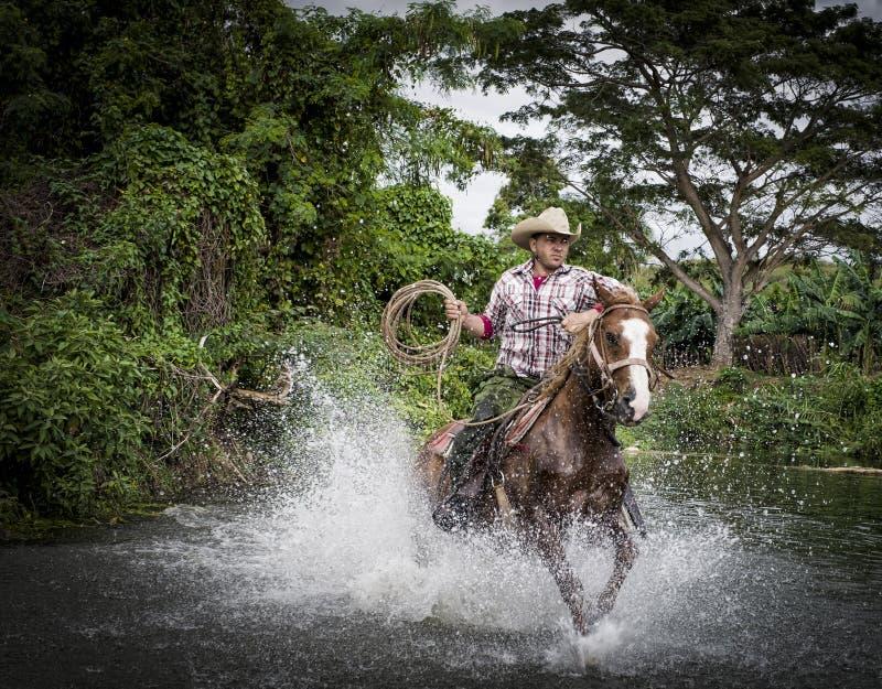 Cowboy, Trinidad, Cuba photo libre de droits