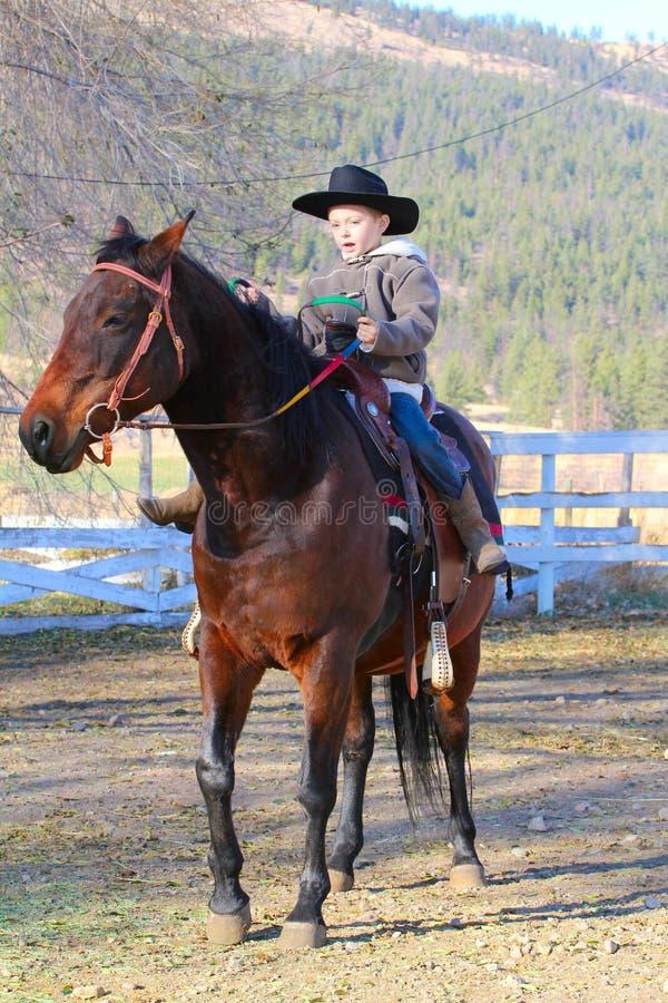 Cowboy und Pferd stockbild