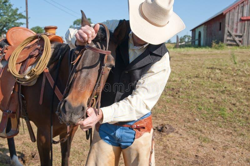 Cowboy und sein Pferd stockbild