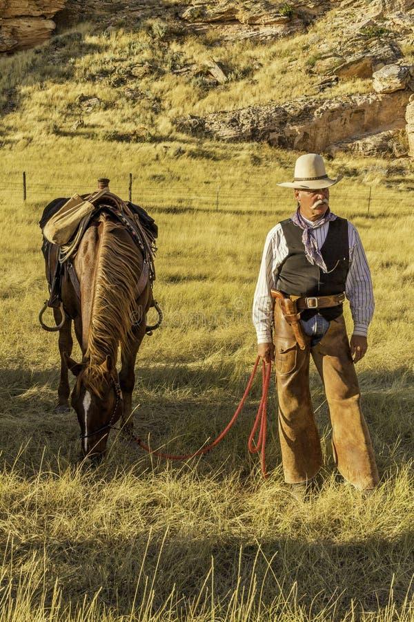 Cowboy vid hans häst royaltyfri bild