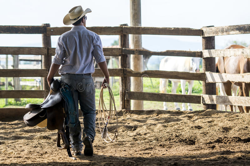 Cowboy walking and watching stock image