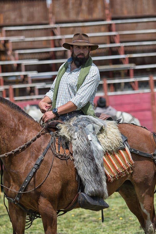 Cowboy zu Pferd in der Rodeoarena lizenzfreie stockbilder