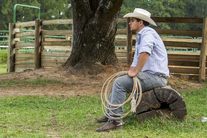 Cowboyaufpassen stockfotografie