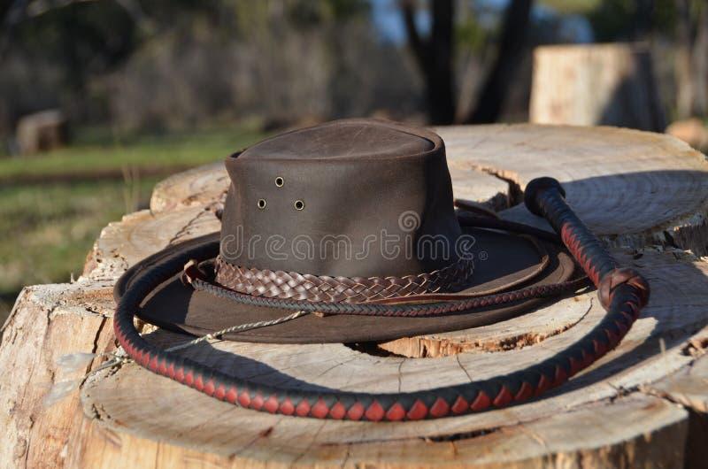 Cowboyhut und Vorratpeitsche stockfotos