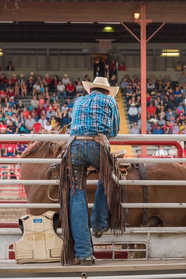 Cowboyklockor sadlar bronchändelse bakifrån banorna royaltyfria bilder