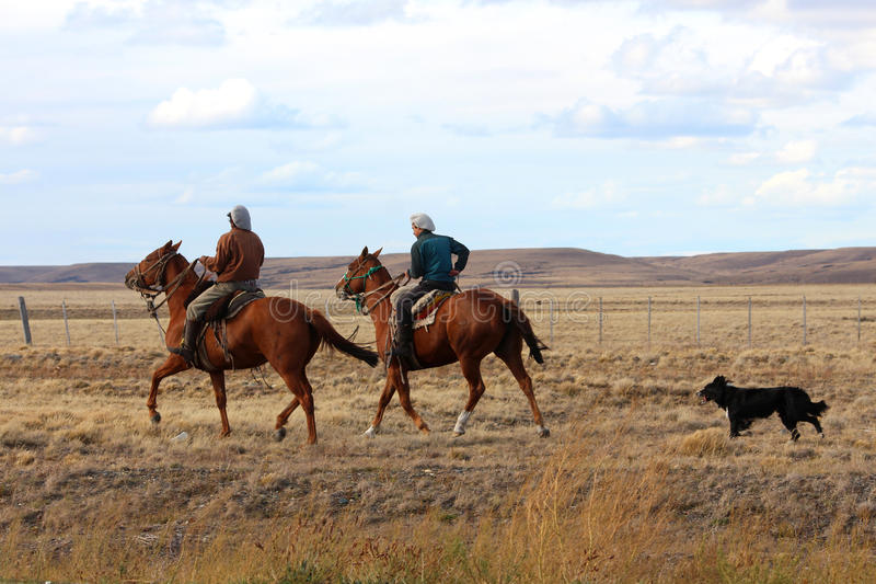 Cowboys with cattle dog. Tierra del Fuego stock image