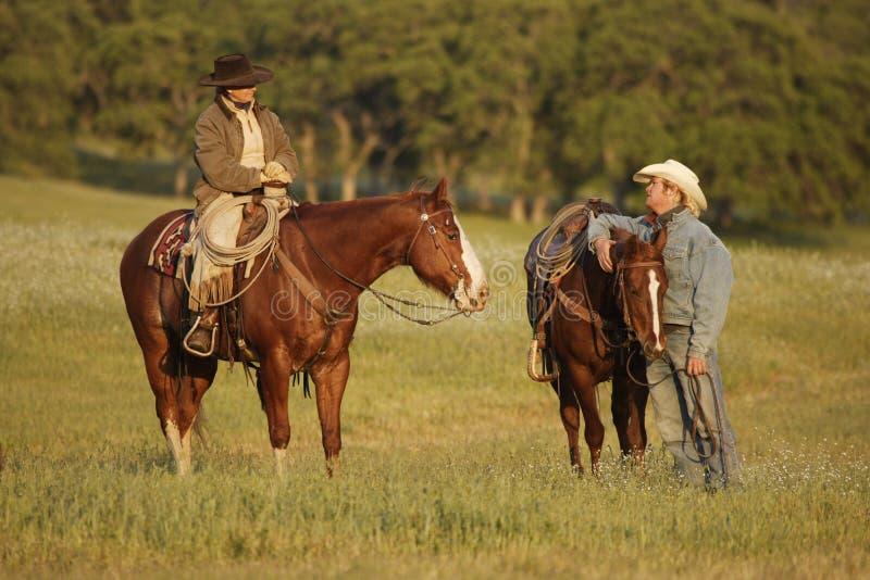 Cowboys, die in der Wiese sich treffen stockfoto