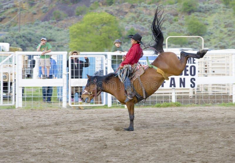 Cowboys, die im Ranch Bronc-Reiten konkurrieren stockbild