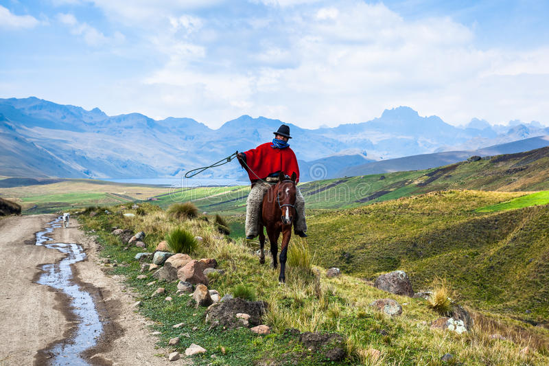 Cowboys riding horses. Ozogoche, Ecuador, December 19, 2015: Unidentified Cowboys with red poncho and `zamarro` lambskin trousers, riding horses, Ozogoche royalty free stock photography