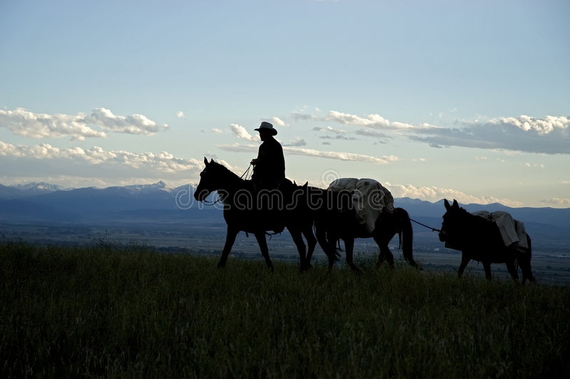 Cowboyschattenbild stockfotografie