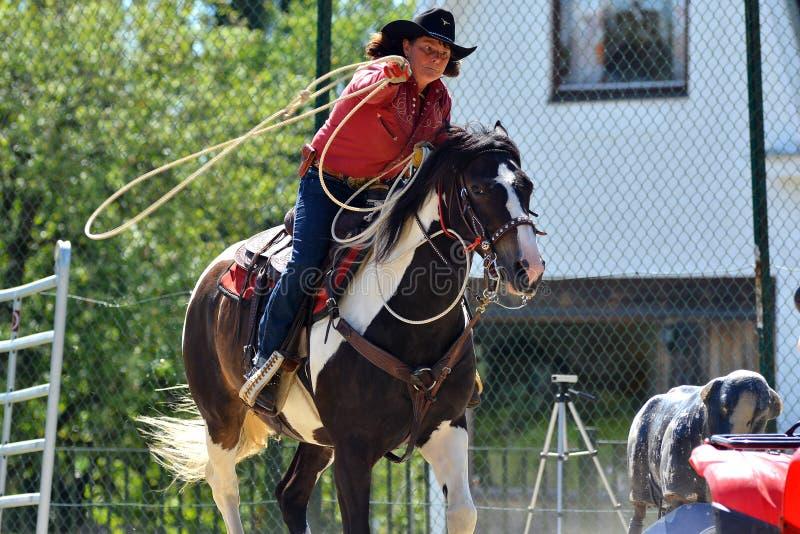 Cowboyshow royaltyfri bild
