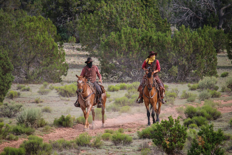 cowboysrover royalty-vrije stock foto