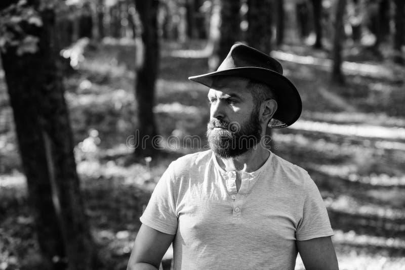cowboystijl de mens hipster ontspant in zonnige weer van de de herfst het boslente Het kamperen en Wandeling rijp mannetje met br royalty-vrije stock foto's