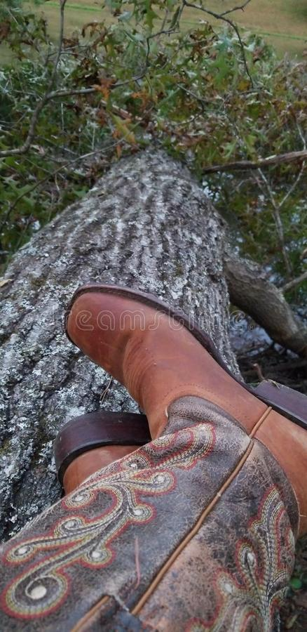 Cowgirl Boots In Nature stock image