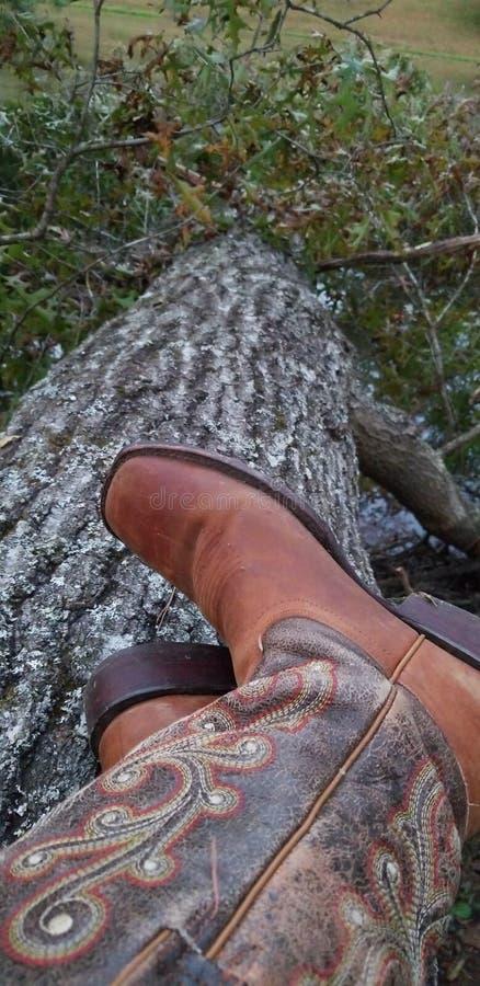 Cowgirl buty W naturze obraz stock