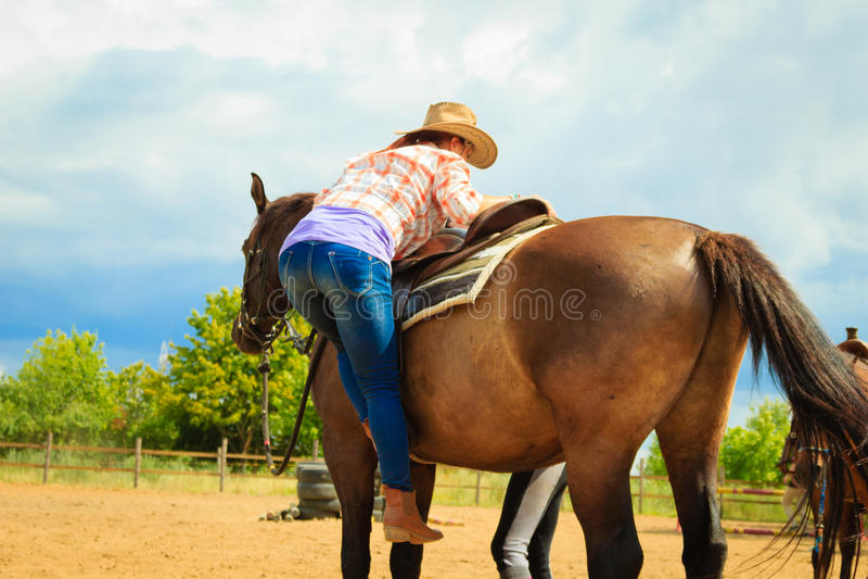 Cowgirl che ottiene cavallo pronto per il giro sulla campagna immagine stock