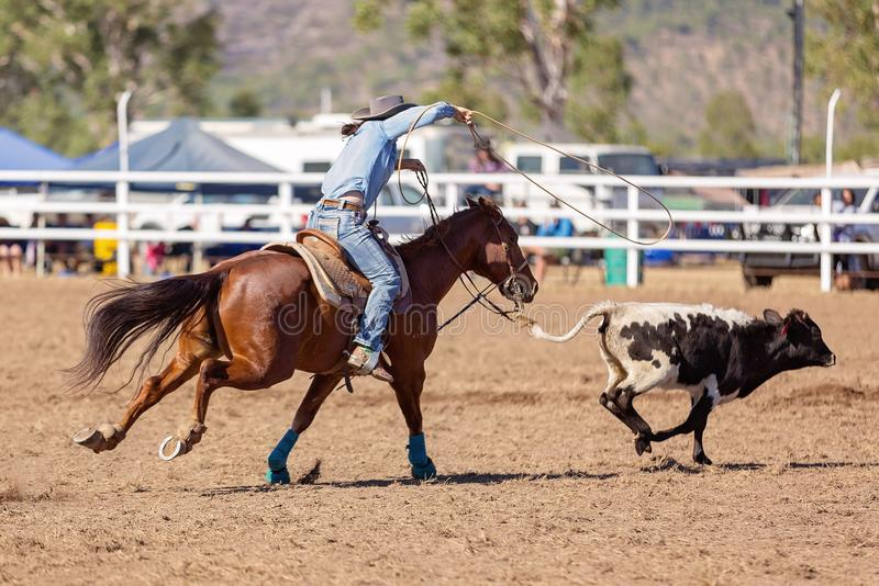 Cowgirl Competing In A Calf Roping Event At A Country Rodeo stock image
