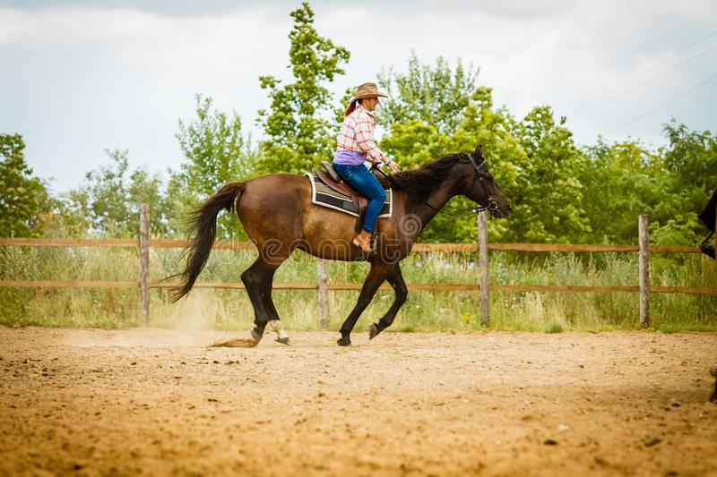 Cowgirl doing horse riding on countryside meadow royalty free stock image