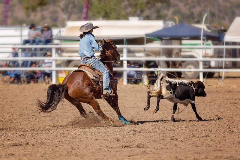 Cowgirl konkurowanie W Łydkowym Roping wydarzeniu Przy kraju rodeo obraz stock