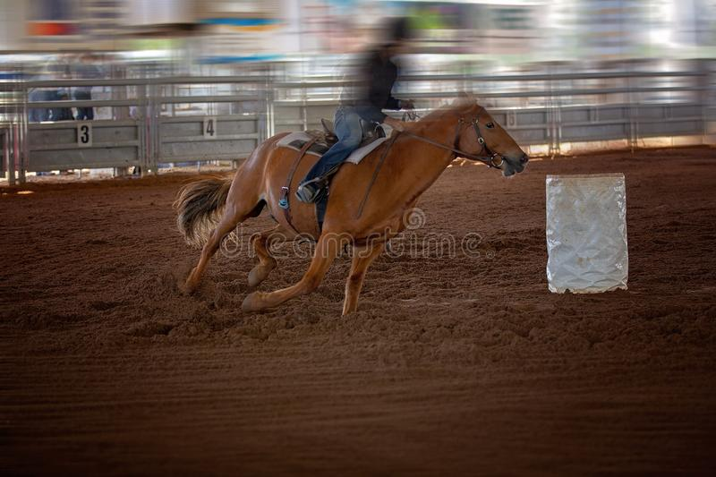 Cowgirl Rides Horse In Barrel Racing Event At A Rodeo. Cowgirl rides horse in a barrel racing competition at an indoor country rodeo royalty free stock photo