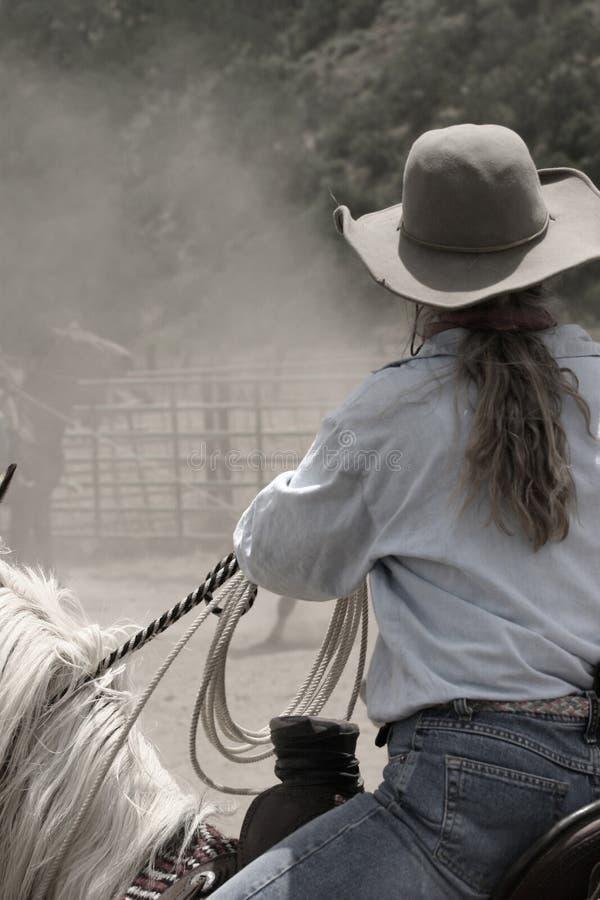 cowgirl teri στοκ φωτογραφία