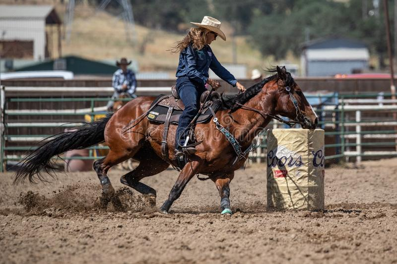 Cowgirl vs. The Barrel royalty free stock image