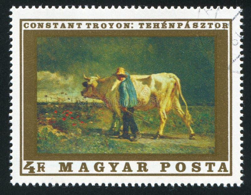 cowherd royalty-vrije stock afbeeldingen