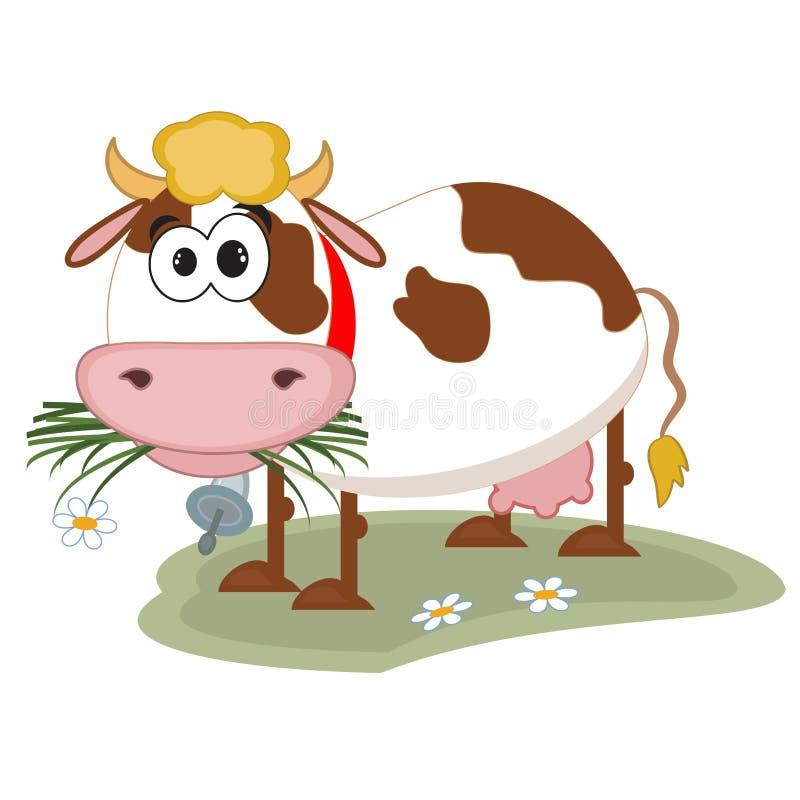 Free Cows Stock Photo - 32465990