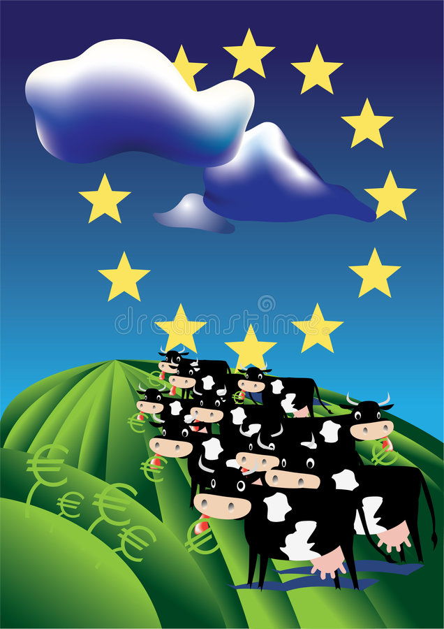Download Cows in european field stock vector. Illustration of meat - 5682054
