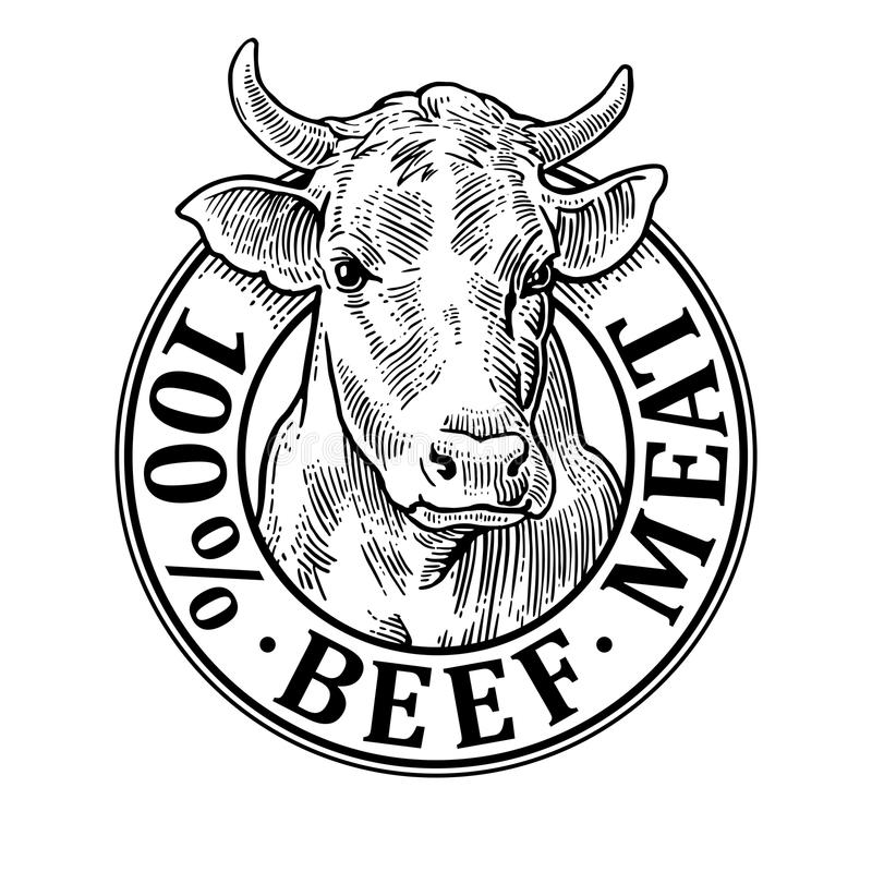 Cows head. 100 percent beef meat lettering. Vintage vector engraving. Cows head. 100 percent beef meat lettering. Hand drawn in a graphic style. Vintage black royalty free illustration