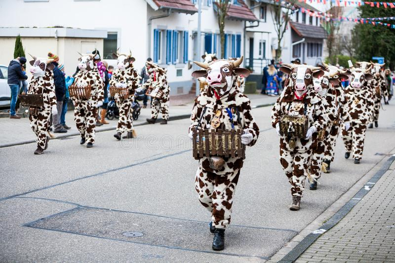 Cows by Masquerade Festival called Narrenumzug. It is a carnival in southern Germany in period of traditional german celebratiion stock photo