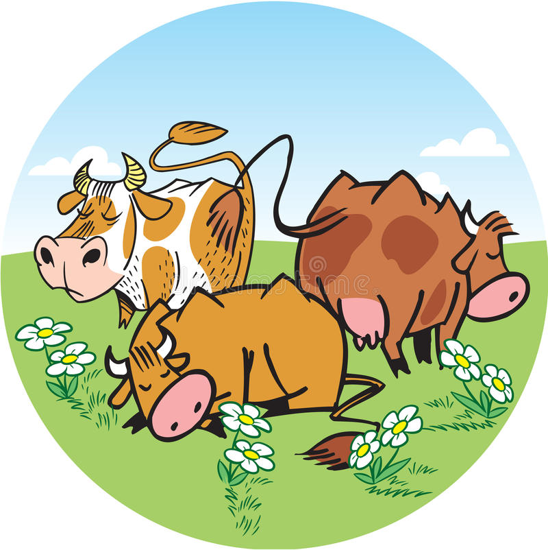 Download Cows in a meadow stock vector. Illustration of milk, mammal - 26795550
