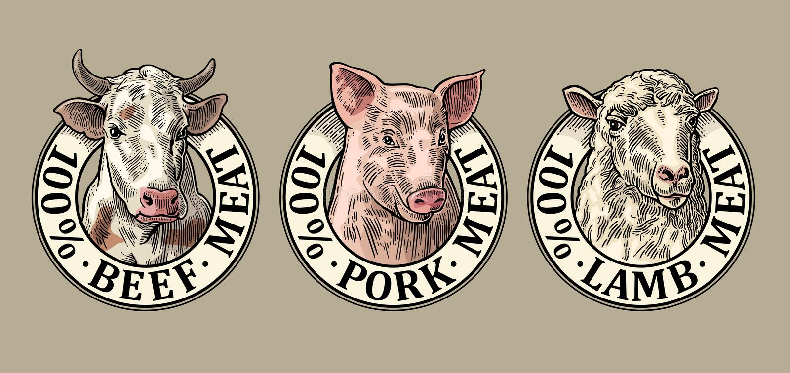 Cows, pig, sheep head. 100 percent beef pork lamb meat lettering. Vintage engraving. Cows, pig, sheep head. 100 percent beef pork lamb meat lettering. Hand drawn vector illustration