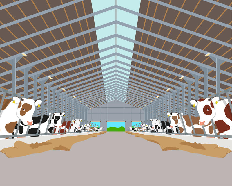 cowshed ilustracji